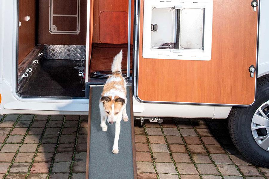 Eine ausziehbare und rutschfeste Hunderampe mit einer Länge von 1,75 m ermöglicht einen bequemen Ein- und Ausstieg der Hunde.