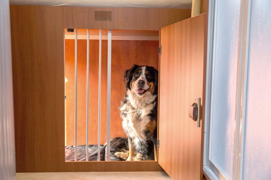 Eine große Tür zum Innenbereich mit schiebbarem Schutzgitter kann während der Fahrt offen gelassen werden.