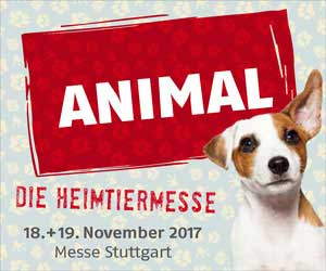 animal 2017