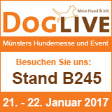 banner doglive 2017